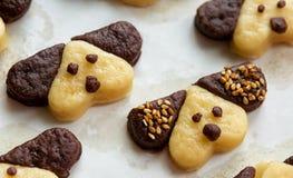Печенья в форме собак в форме для печь стоковые фото