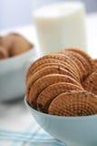 Печенья в шаре - конце-вверх Стоковые Изображения RF