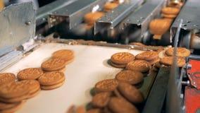 Печенья двигают быстро от транспортера к поясу ` s машины в конце вверх по 4K видеоматериал