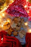 Печенья звезды рождества стоковые изображения rf