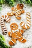 Печенья имбиря и ветви рождественской елки Стоковая Фотография