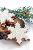 Печенья имбиря рождества Стоковые Фото