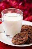 Печенья имбиря шоколада Стоковые Фото