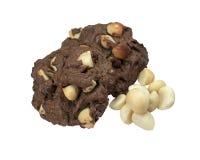 Печенья макадамии изолированные на белизне Стоковое Изображение RF