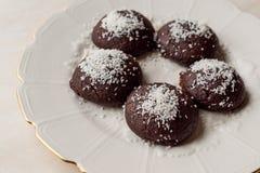 Печенья мини пирожного шоколада влажные с кокосом пудрят/Turkish Islak Kurabiye Стоковое Фото