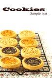Печенья на охладительной решетка Стоковое Фото