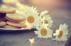 Печенья на плите и стоцвете Стоковая Фотография RF