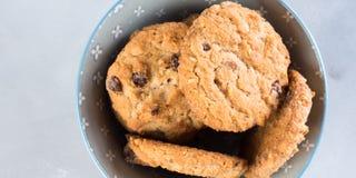 Печенья обломока шоколада в шаре на серой предпосылке знамена Стоковые Фото