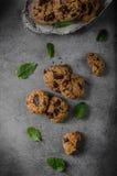 Печенья обломоков шоколада Стоковое Изображение RF