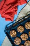 Печенья овсов с обломоками и фундуками шоколада стоковое фото
