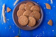 Печенья овсяной каши в коричневой плите на голубой предпосылке Деревенский тип Взгляд сверху Стоковые Изображения
