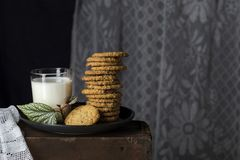 Печенья овсяной каши с стеклом молока Стоковое фото RF