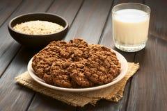 Печенья овсяной каши шоколада Стоковые Фото
