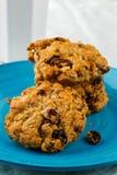 печенья Овсян-грецкого ореха Стоковая Фотография RF