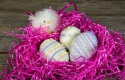 Печенья пасхального яйца в гнезде с цыпленоком Стоковые Изображения
