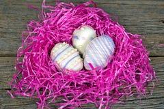 Печенья пасхального яйца в гнезде Стоковые Фото