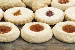 Печенья печенья студня Стоковая Фотография