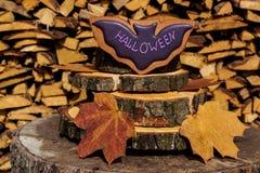 Печенья пряника хеллоуина домодельные на деревянной предпосылке Стоковая Фотография