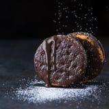 Печенья сладостного шоколада с порошком мухы Стоковое Фото