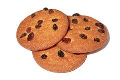 Печенья с изюминкой на белой предпосылке Стоковое фото RF