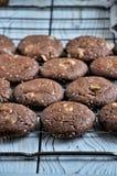 Печенья с какао, белым шоколадом и зажаренными семенами сезама Конец-вверх Стоковое Изображение RF