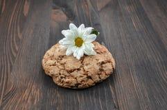 Печенья с хлопьями для здорового питания Стоковая Фотография RF