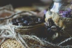 Печенья трав и кофе, милые фото Стоковое Фото
