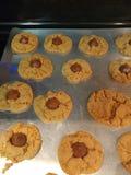 Печенья цветения арахисового масла стоковое изображение rf