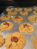 Печенья цветения арахисового масла Стоковая Фотография
