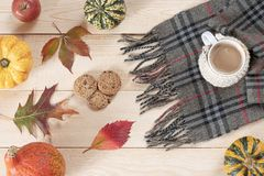 Печенья шоколада и одетая чашка белого кофе с checkered шарфом стоковое фото rf