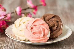 Печенья шоколада и ванили клубники закрывают вверх Стоковые Фото