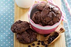 Печенья шоколада i шар Стоковые Изображения RF