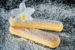 2 печенья для тирамису Стоковые Изображения RF