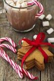 Печенья Gingerbread Стоковое Изображение