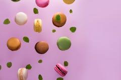 Печенья Macaroons на пинке Стоковое Изображение