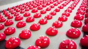 Печенья Raspberrymacaroons Стоковые Изображения