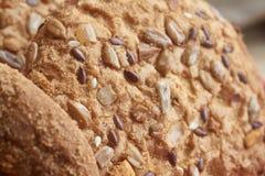 Печенья Vegan хрустящие при солнцецвет, семена льна и изолированные семена сезама Взгляд макроса Стоковые Фото