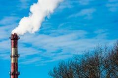 Печная труба-черенок Стоковые Фотографии RF