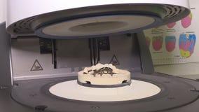Печь и пресса для керамических зубоврачебных протезов, в действии Перегар протеза акции видеоматериалы