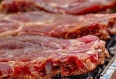 Печь свежее мясо на гриле стоковое изображение rf