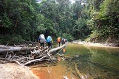 Пешая группа в составе человек пересекая реку Стоковые Изображения RF
