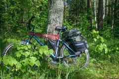 Пешая склонность велосипеда против дерева Стоковые Изображения