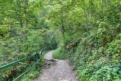 Пешая трасса перемещения горы Стоковое Изображение