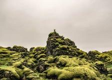 Пешая тропа идя через поле лавы покрытое с зеленым пушистым исландским мхом стоковая фотография