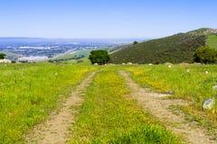 Пешая тропа на холмах предусматриванных в зеленой траве и wildflowers южной области San Francisco Bay, Santa Clara County; Сан-Хо стоковые фотографии rf