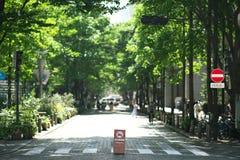 Пешеходная зона во время часа обеда на Marunouchi, токио Стоковое Фото