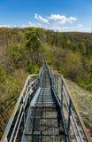 Пешеходный мост в горах стоковое изображение rf
