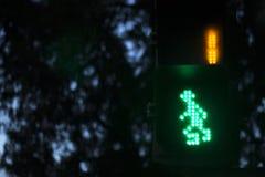 Пешеходный переход света зебры Стоковое фото RF