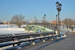 пешеход моста грациозно Стоковая Фотография