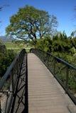 пешеход моста стоковое фото